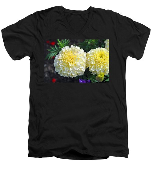 Carnations Men's V-Neck T-Shirt by Tikvah's Hope