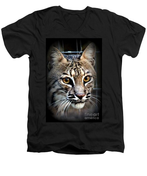 Men's V-Neck T-Shirt featuring the photograph Cat Fever by Kathy  White