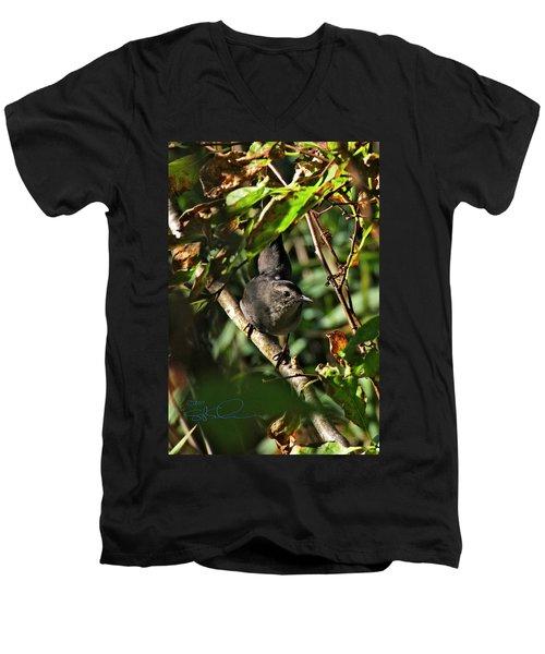 Catbird Men's V-Neck T-Shirt