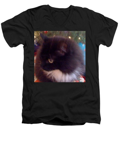 Chaucy Kitty All Sparkly #cats #fluffy Men's V-Neck T-Shirt