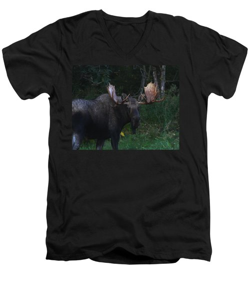 Men's V-Neck T-Shirt featuring the photograph Checking You Out by Doug Lloyd