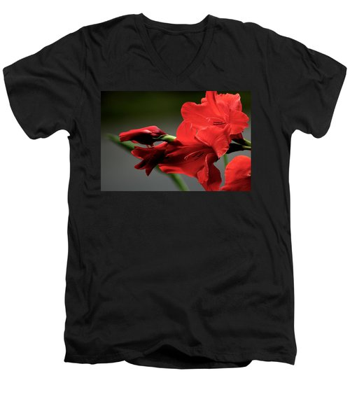 Chromatic Gladiola Men's V-Neck T-Shirt