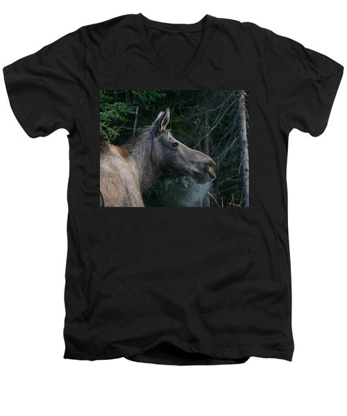 Men's V-Neck T-Shirt featuring the photograph Cold Morning by Doug Lloyd