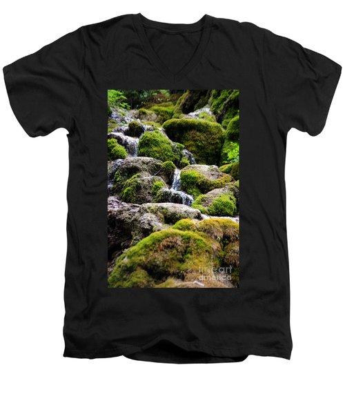 Men's V-Neck T-Shirt featuring the photograph Colorado 5 by Deniece Platt