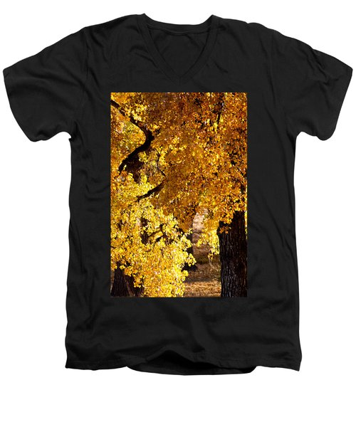 Men's V-Neck T-Shirt featuring the photograph Colorado Gold by Colleen Coccia