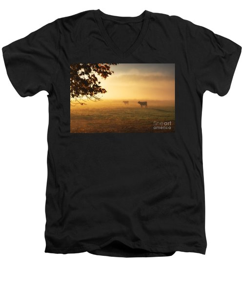 Cows In A Foggy Field Men's V-Neck T-Shirt