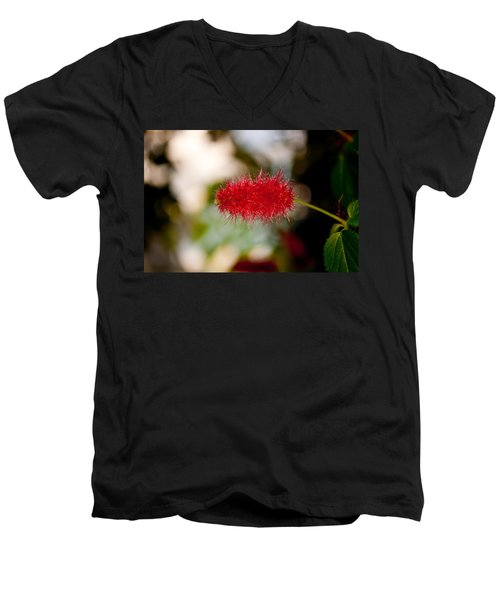 Crimson Bottle Brush Men's V-Neck T-Shirt by Tikvah's Hope