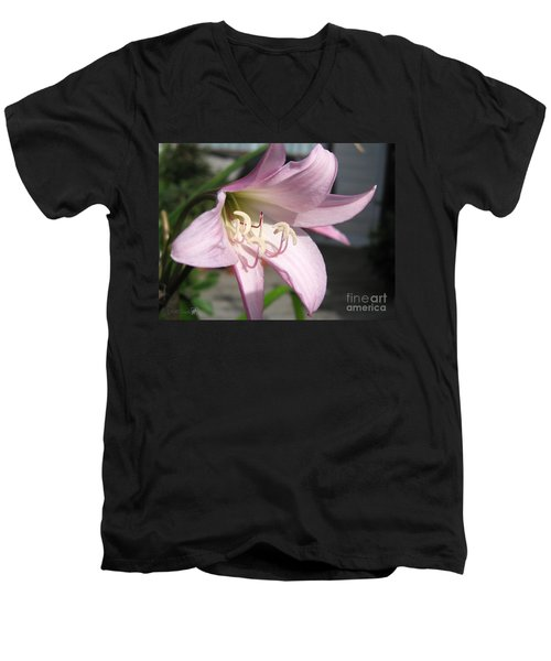 Men's V-Neck T-Shirt featuring the photograph Crinum Lily Named Powellii by J McCombie