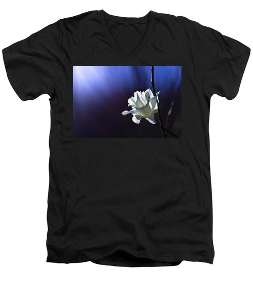 Daffodil Light Men's V-Neck T-Shirt