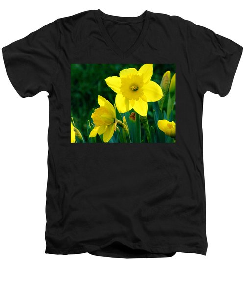 Men's V-Neck T-Shirt featuring the photograph Daffodils by Sherman Perry