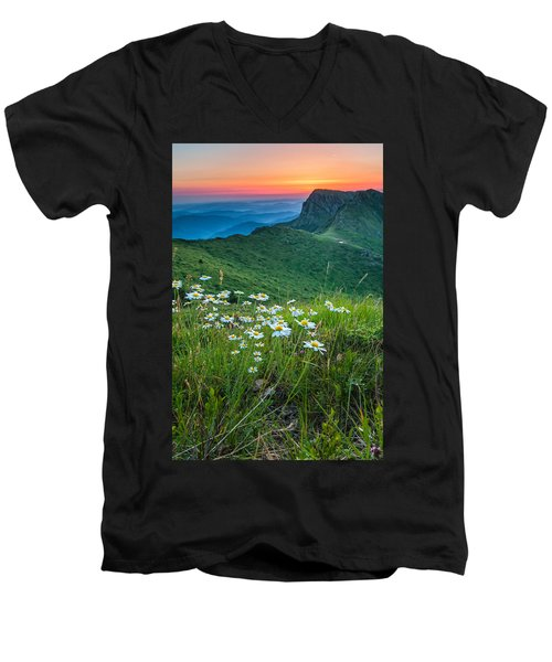 Daisies In The Mountyain Men's V-Neck T-Shirt