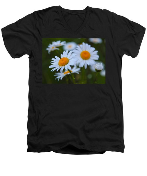 Men's V-Neck T-Shirt featuring the photograph Daisy by Athena Mckinzie