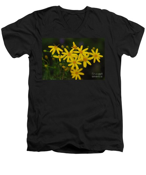 Men's V-Neck T-Shirt featuring the photograph Dbg 041012-0281 by Tam Ryan