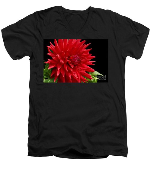 Decked Out Dahlia Men's V-Neck T-Shirt by Cindy Manero