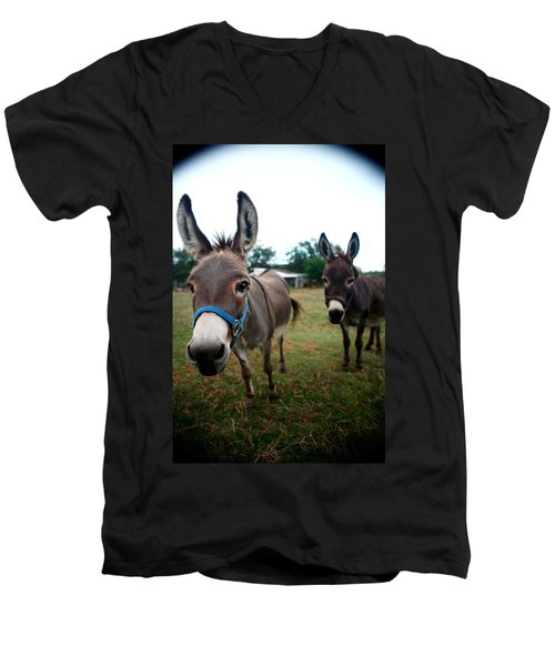 Men's V-Neck T-Shirt featuring the photograph Doting Donkeys by Lon Casler Bixby