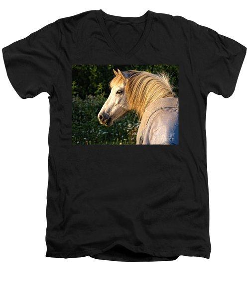 Dyfra Men's V-Neck T-Shirt by Shari Nees