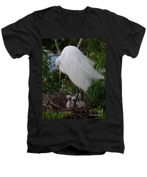 Egret With Chicks Men's V-Neck T-Shirt