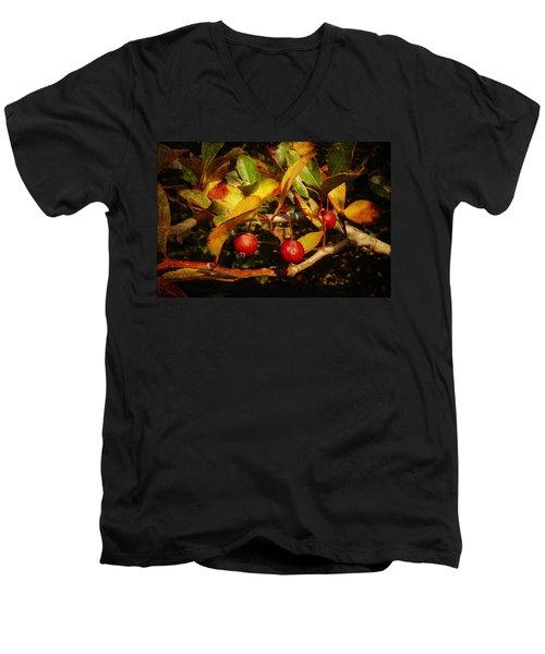 Fall Colors Men's V-Neck T-Shirt by Milena Ilieva