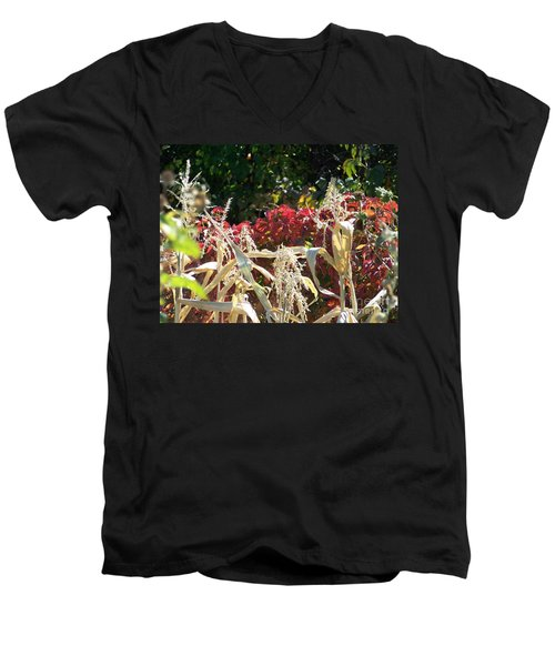 Fall Harvest Of Color Men's V-Neck T-Shirt
