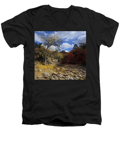 Fall In Zion High Country Men's V-Neck T-Shirt