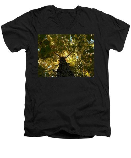 Fall Men's V-Neck T-Shirt