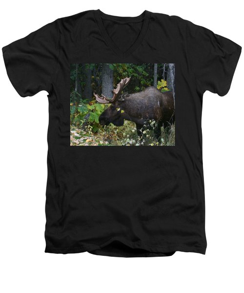 Men's V-Neck T-Shirt featuring the photograph Fall Master by Doug Lloyd