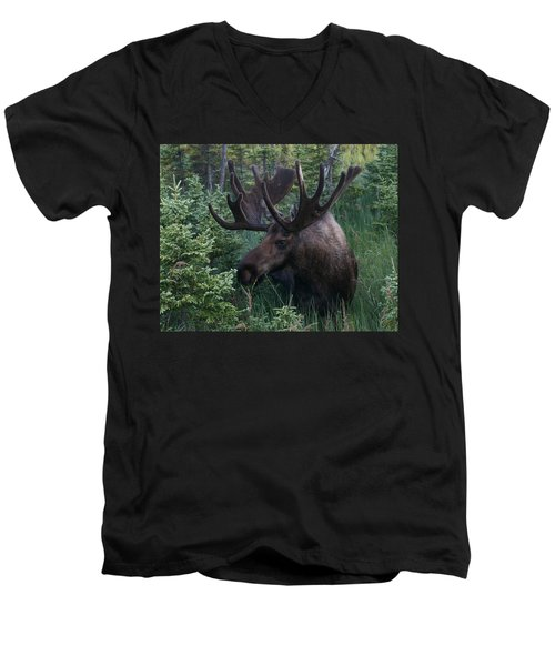 Men's V-Neck T-Shirt featuring the photograph Feeding Along by Doug Lloyd
