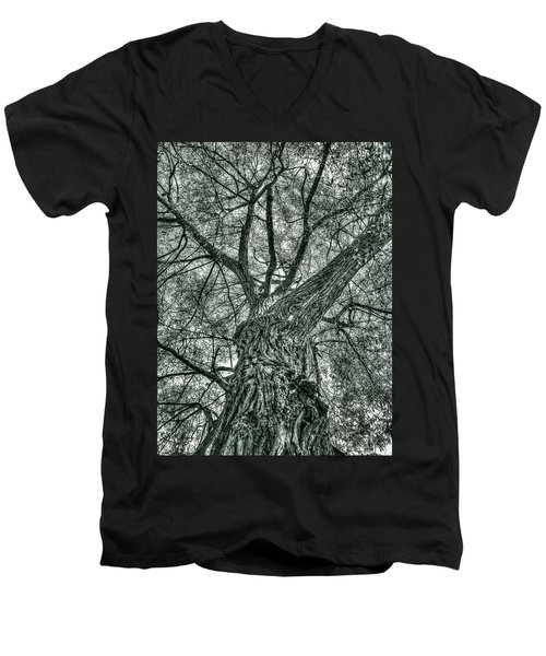 Finkles Landing Tree Men's V-Neck T-Shirt