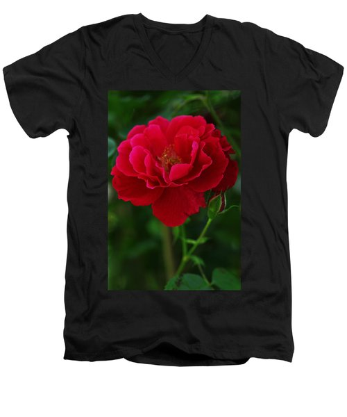 Flower Of Love Men's V-Neck T-Shirt
