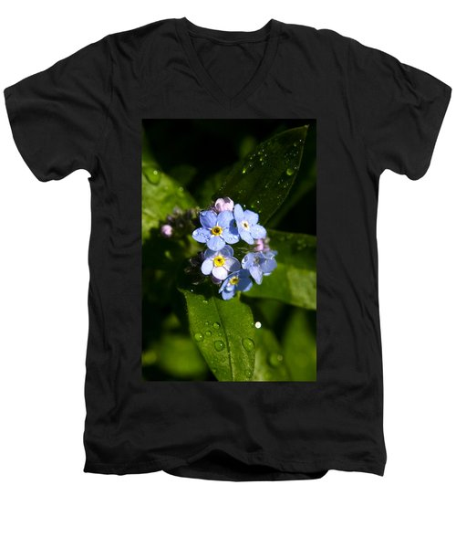 Forget Me Not Men's V-Neck T-Shirt by Ralph A  Ledergerber-Photography
