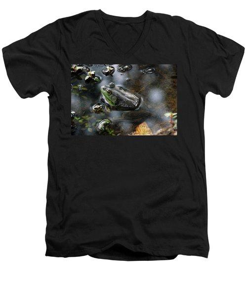 Frog In The Millpond Men's V-Neck T-Shirt by Kay Lovingood