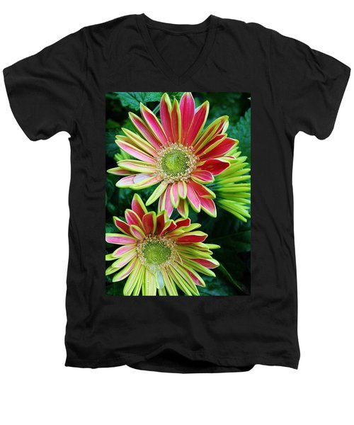 Men's V-Neck T-Shirt featuring the photograph Gerber Daisies by Bruce Bley