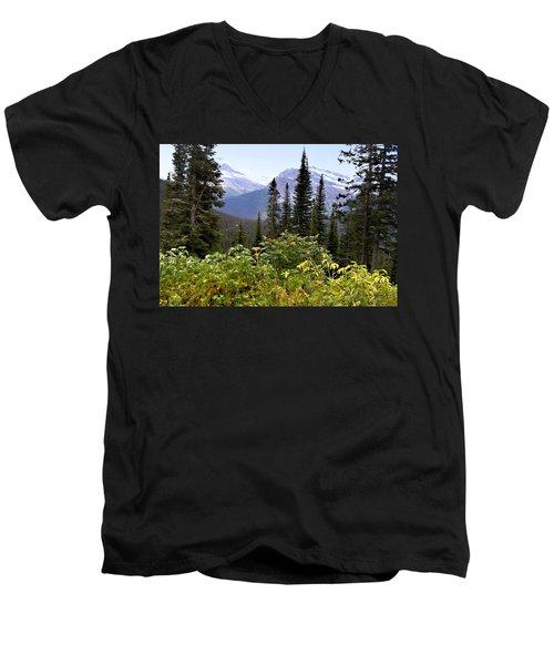 Glacier Scenery Men's V-Neck T-Shirt