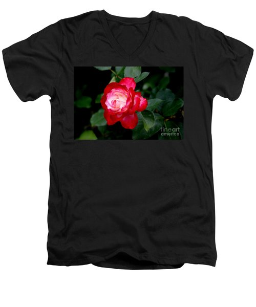 Men's V-Neck T-Shirt featuring the photograph Glowing by Living Color Photography Lorraine Lynch