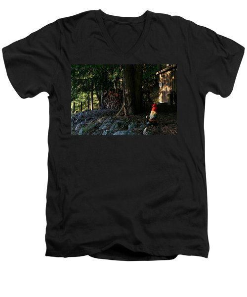 Gnome And The Woodpile Men's V-Neck T-Shirt