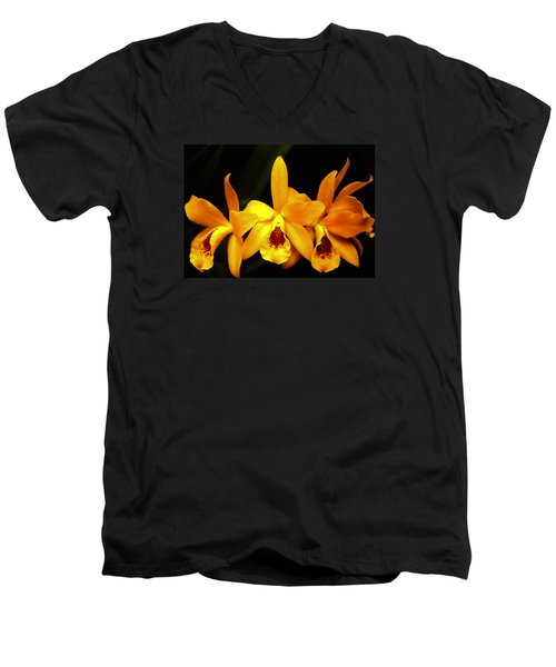Men's V-Neck T-Shirt featuring the photograph Golden Cattleya by Rosalie Scanlon