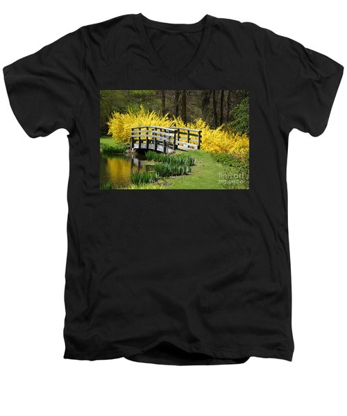 Golden Days Of Spring Men's V-Neck T-Shirt