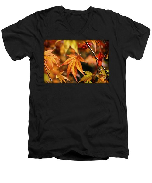 Men's V-Neck T-Shirt featuring the photograph Golden Fall. by Clare Bambers