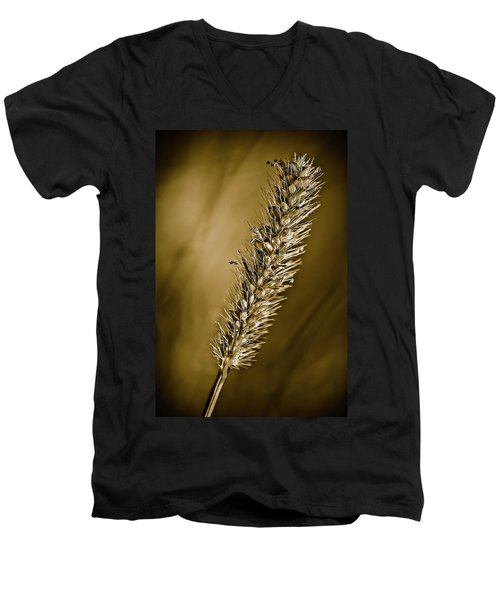 Grass Seedhead Men's V-Neck T-Shirt