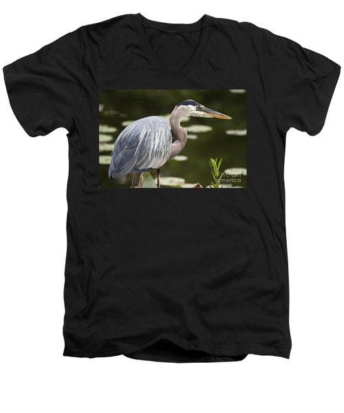 Great Blue Heron  Men's V-Neck T-Shirt by Jeannette Hunt