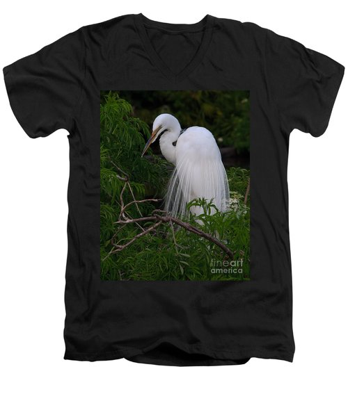 Great Egret Nesting Men's V-Neck T-Shirt