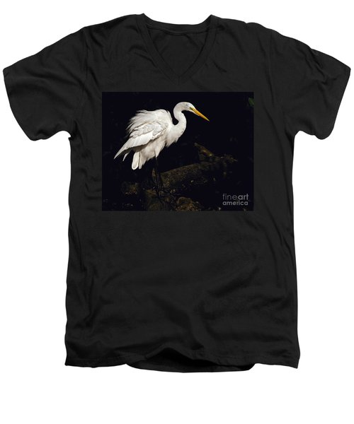 Great Egret Ruffles His Feathers Men's V-Neck T-Shirt