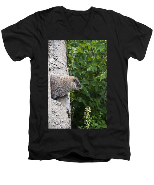 Groundhog Day Men's V-Neck T-Shirt by Bill Cannon