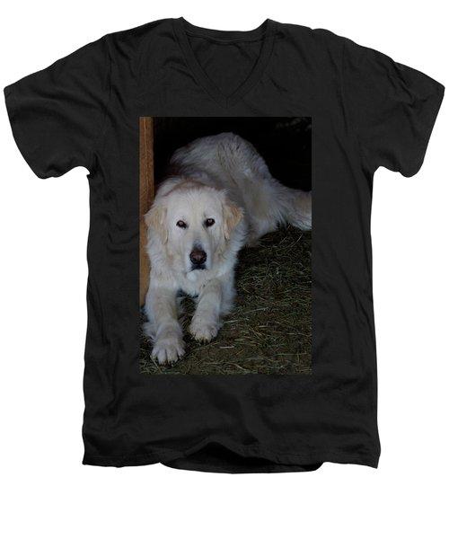 Guarding The Barn Men's V-Neck T-Shirt