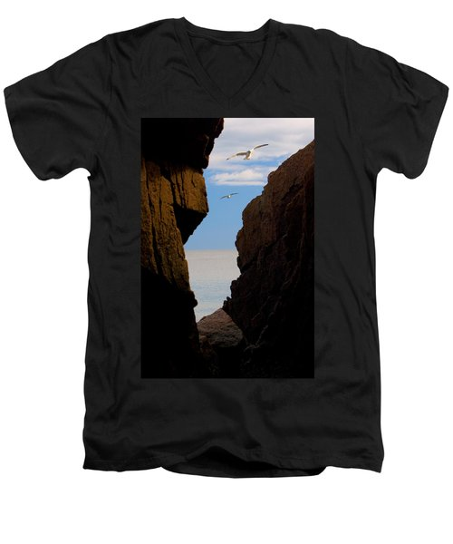 Gulls Of Acadia Men's V-Neck T-Shirt by Brent L Ander