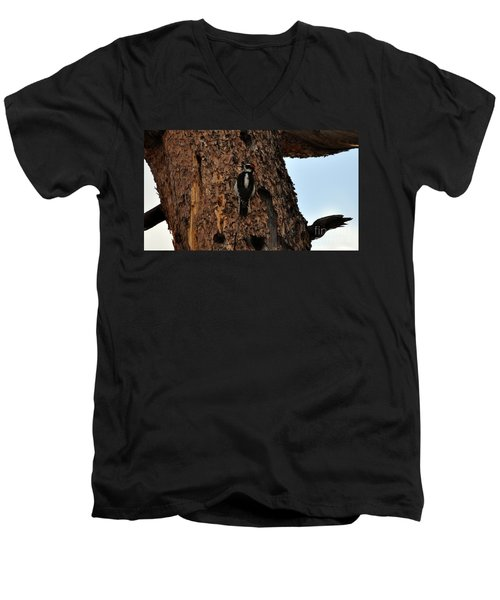 Hairy Woodpecker On Pine Tree Men's V-Neck T-Shirt