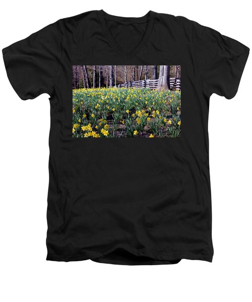 Hills Of Daffodils Men's V-Neck T-Shirt by Betty Northcutt