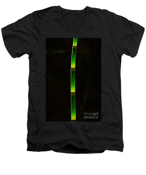 Horsetail  Men's V-Neck T-Shirt