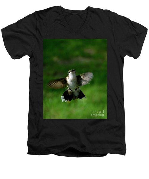 Hovering Hummingbird  Men's V-Neck T-Shirt by Sue Stefanowicz