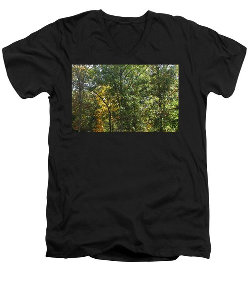 Men's V-Neck T-Shirt featuring the photograph Image Of Fall by Pamela Hyde Wilson